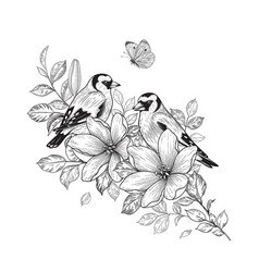 Hand drawn goldfinches sitting on flower vector