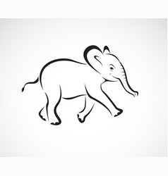 little elephant design on white background wild vector image