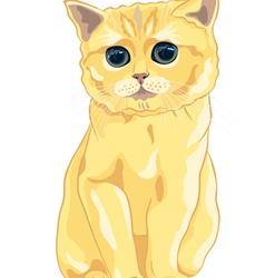 cute fluffy british kitten vector image vector image