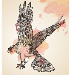 hand drawn of decorative eagle vector image vector image