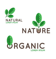 organic logo design vector image vector image