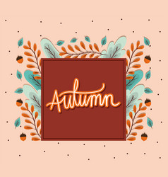 Autumn leaves and acorns around frame vector