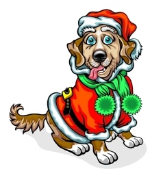 Dog in the image of Santa Claus vector image