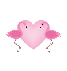 exotic birds love flamingo couple beautiful pink vector image