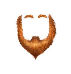 False beard patricks composition vector