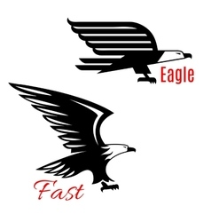 Flying eagles icons set vector image