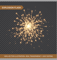 Golden glowing lights effects isolated on vector