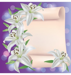 Greeting or invitation card with lily flowers vector