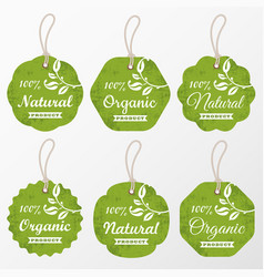 set retro organic cardboard labels and tags vector image