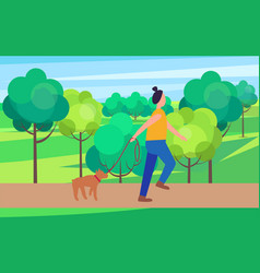 Woman walking dog in park vector