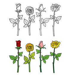 hand drawn rose coloring page vector image vector image