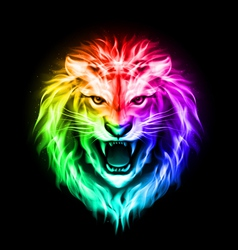 Head of colorful fire lion vector image vector image