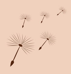 Dandelion fluff on a light background vector