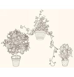 Garden set with 3 plants in flowerpot vector image