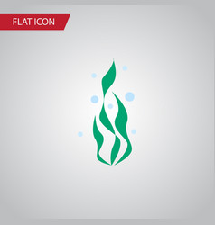 isolated water plant flat icon seaweed vector image