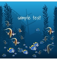 Marine life in bright colors and sample text vector