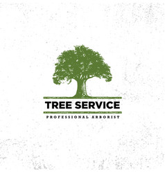 Professional arborist tree care service organic vector
