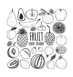 Set fruit in doodle style vector