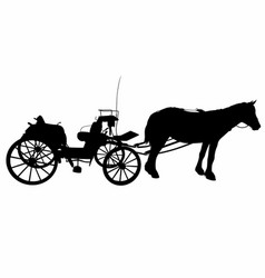 Shadow of a large carriage vector