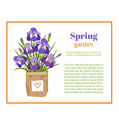 spring garden flower brochure design backgrounds vector image