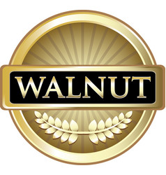 Walnut gold icon vector