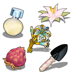 beautiful flowers perfume and garden trowel vector image vector image
