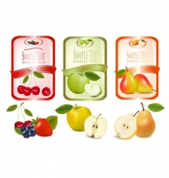 three labels with fruits vector image vector image