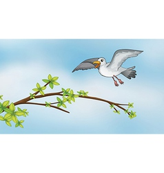 A flying bird vector image