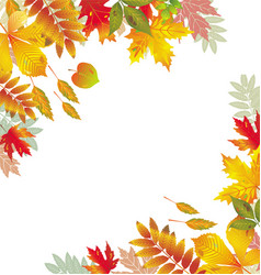 corners with autumnal leaves vector image