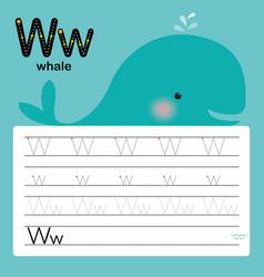 alphabet w worksheet learning english vocabulary vector image