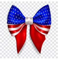 Big bow in colors usa flag vector