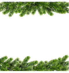 Christmas background with green pine branches vector