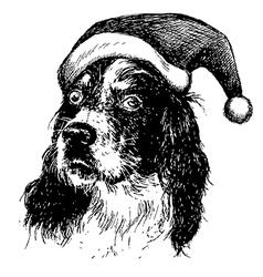 Christmas English setter dog vector