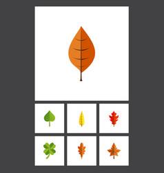 Flat icon foliage set of leafage foliage linden vector
