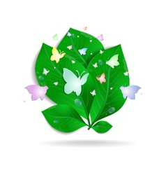 Green leaves with butterflies and waterdrops vector image
