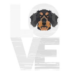 Love dachshund vector