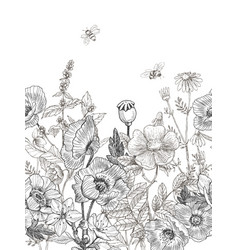 Wild and herbs plants seamless border vintage vector