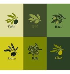Olive branch Set of labels vector image vector image