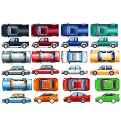 Set of cars and trucks in many colors vector image