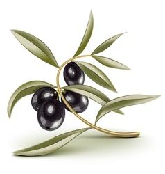 olive branch black vector image