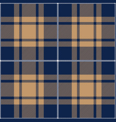 blue and beige tartan plaid seamless pattern vector image
