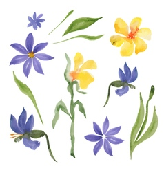 Blue and yellow flowers vector