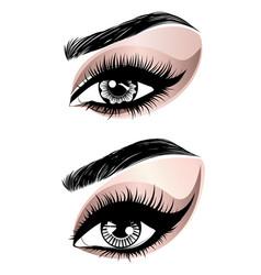 rose gold eye make up vector image