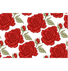 seamless pattern with red rose flowers on white vector image