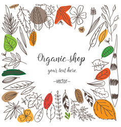 Set doodle leaves vector