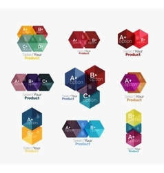 Set of business hexagon layouts with text and vector