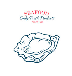 hand drawn oyster icon vector image vector image