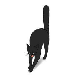 black cat for halloween design vector image