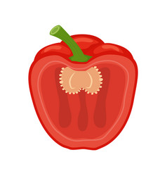 half red belly pepper isolated vector image