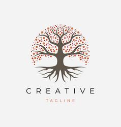 Life tree logo design vector